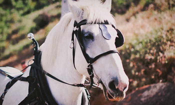 The Ranch at Bandy Canyon - Escondido, CA: Horseback Trail Ride for One or Horseback Trail Ride with Wine for Two at The Ranch at Bandy Canyon (Up to 56% Off)