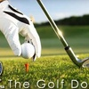 Half Off Lesson with The Golf Doctor