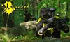 Marked Paintball - Carp - Hardwood Plains: $15 for Equipment, All-Day Entry, and Lunch at Marked Paintball in Carp ($60 Value)