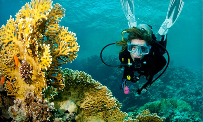 Total Wreck Divers - Toronto (GTA): $29 for a One-Hour Discover Scuba Class at Total Wreck Divers in Queensville ($60 Value)