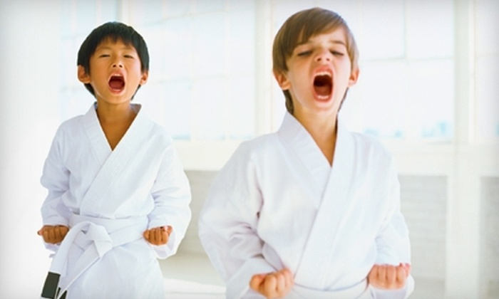 US Elite Martial Arts & Fitness Center - Arlington Heights: $40 for an Eight-Class Punch Card at the U.S. Elite Martial Arts & Fitness Center in Arlington Heights ($139 Value)