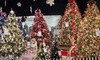 Seasonal Specialty Store - Multiple Locations: $15 for $30 Worth of Holiday Gifts and Accessories at Seasonal Specialty Stores