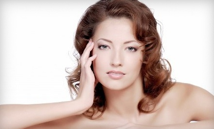 Shelley Salon and Day Spa: 1 Basic Facial - Shelley Salon and Day Spa in East Greenbush