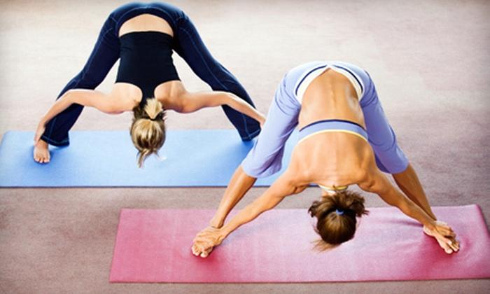 The Yoga Suite - Center for Yoga Studies - Hamtramck: $45 for 15 Drop-In Classes at The Yoga Suite - Center for Yoga Studies in Hamtramck (Up to $240 Value)