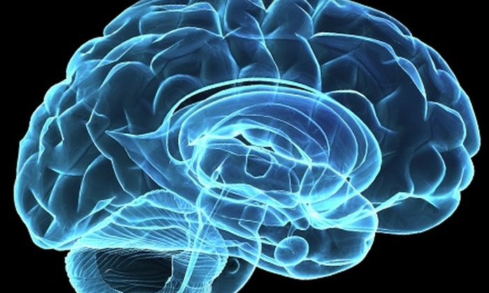 Brain Equanimity Center - Eastern Malibu: $240 for One Resonant Field Imaging Session at Brain Equanimity Center in Malibu