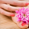 Half Off Nail Services in Chesapeake