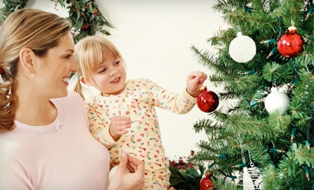 6- to 8-Foot Christmas Tree with Delivery (a $110 value) - AA Christmas Trees in