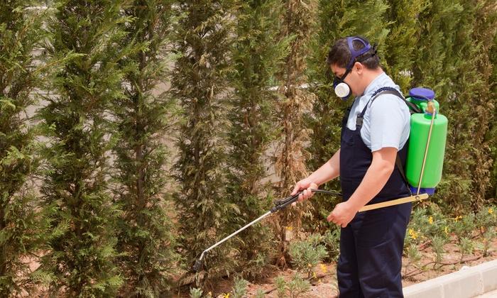 Mosquito Elite Pest Control - Hampton Roads: Up to 64% Off Home Pest-Control Treatment at Mosquito Elite Pest Control