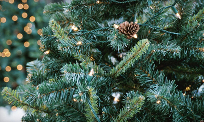 Plow Farms - Flying Hills: Christmas Trees or Holiday Merchandise at Plow Farms in Plowville (Up to Half Off). Three Options Available.