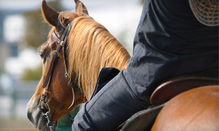 Wild Rose Equine Center - Green: $15 for a One-Hour Horseback Trail Ride at Wild Rose Equine Center in Dearborn ($30 Value)