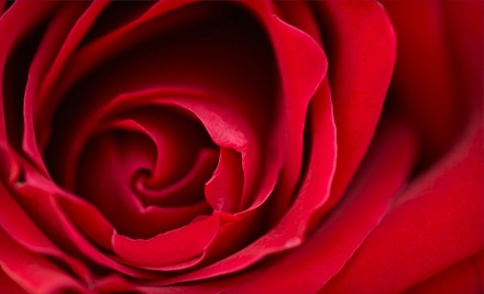 Valentine's Day Package (a $140 value, including tax) - Get Roses in Windsor