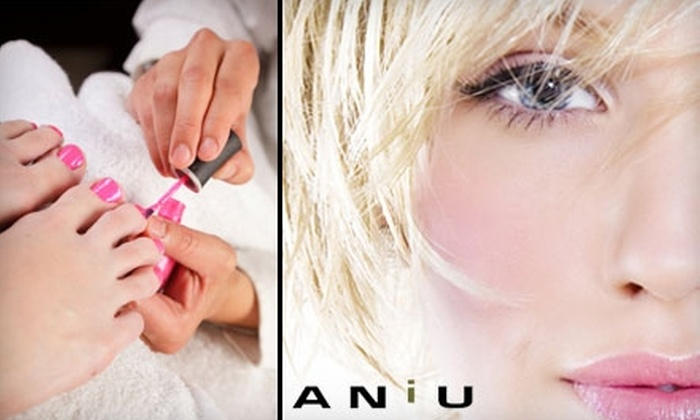 ANiU Salon - Business Park: $30 for a Deluxe Sole Perfection Pedicure or $50 for a Level- One Haircut, Style, and Color at ANiU Salon
