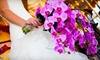 Kalamazoo Wedding Affair - Central Business District: Two or Four Tickets to the Kalamazoo Wedding Affair Bridal Show on October 7