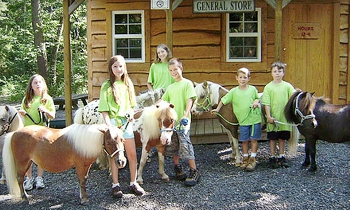 Land of Little Horses Farm Park - Gettysburg: $13 for Two Tickets to Land of Little Horses Farm Park in Gettysburg (Up to $27.90 Value)