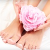 Up to 51% Off Mani-Pedi at Salon Dragonfly