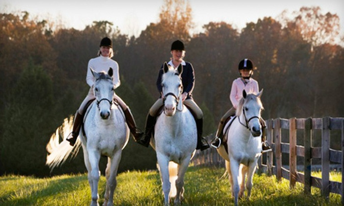 Equine Kingdom Riding Academy - Equine Kingdom: One or Three Horseback-Riding Lessons at Equine Kingdom Riding Academy in Greensboro (Up to 53% Off)