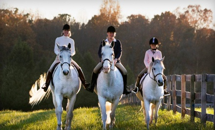 One 45-Minute Group Horseback-Riding Lesson (a $60 value) - Equine Kingdom Riding Academy in Greensboro