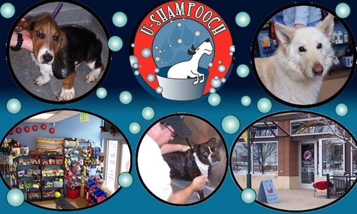 Half off dog or cat wash u shampooch groupon customer reviews solutioingenieria Choice Image
