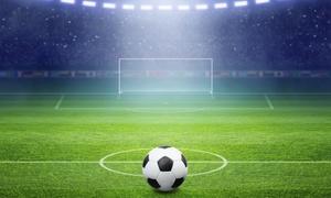 Hibernian Football Club: Hibernian FC Stadium Tour for One or Two
