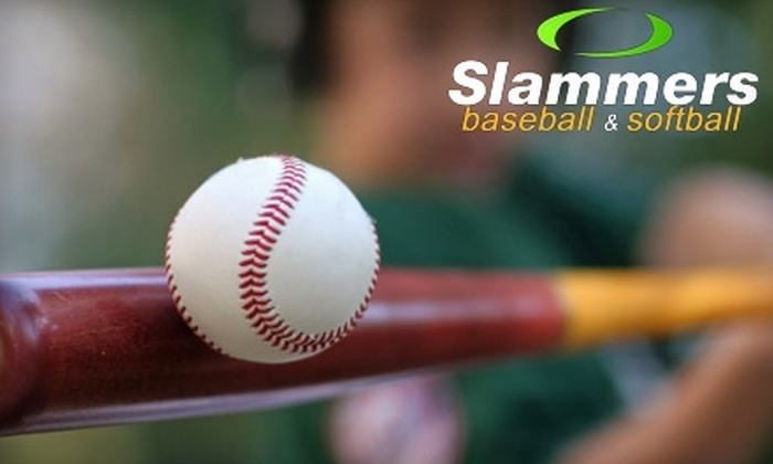 Slammer's Training Academy - Libertyville: $10 for 30 Minutes of Batting-Cage Rental at Slammer's Training Academy in Lake Forest ($20 Value)