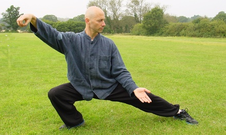 $39 for Eight Weeks of Tai Chi or Baguazhang Classes with an Instructional DVD at Gravity & Grace ($150 Value)
