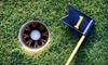 Max's Golf Centre - Max's Sports World: One-Hour Indoor Driving-Range Session or Three Hours of Virtual Golf for Up to Four at Max's Golf Centre (Up to 76% Off)