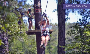 Callaway Gardens: Ziplining, Obstacle Course, and Botanical Gardens Admission at Callaway Gardens (Up to 50% Off)