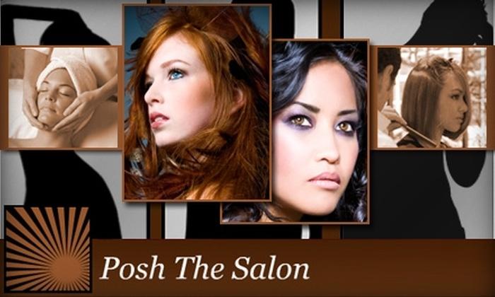 Posh the Salon - Warehouse District: $50 for $125 Worth of Salon & Spa Services at Posh the Salon