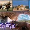 52% Off Safari and Monument Tour