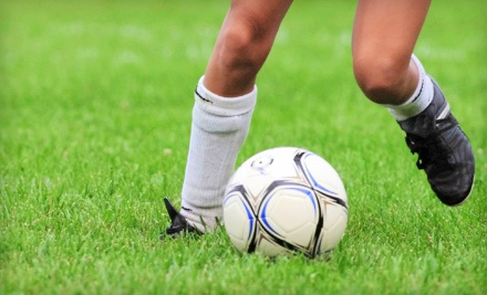 $40 Groupon to Force Soccer Shoppes - Force Soccer Shoppes in Parma