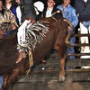 Half Off Rodeo Outing for Two or Four in Tomball