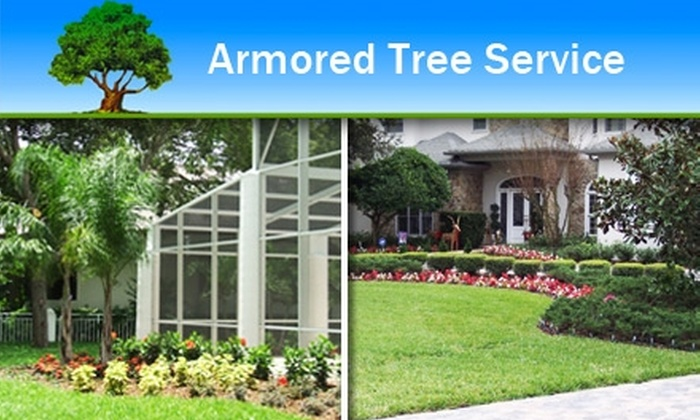 Armored Tree Service - Tampa Bay Area: $30 Professional Landscaping Service from Armored Tree Service ($60 Value)