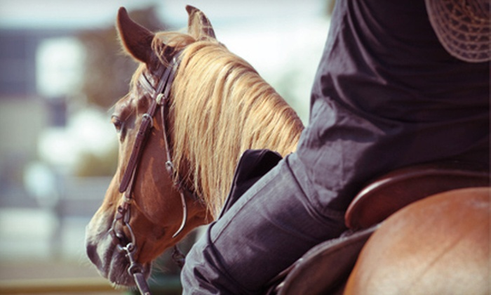 Jbar Equestrian at Eaglerise Stables - Springboro: Two, Four, or Eight One-Hour Private Horseback-Riding Lessons from Jbar Equestrian at Eaglerise Stables (Up to 51% Off)
