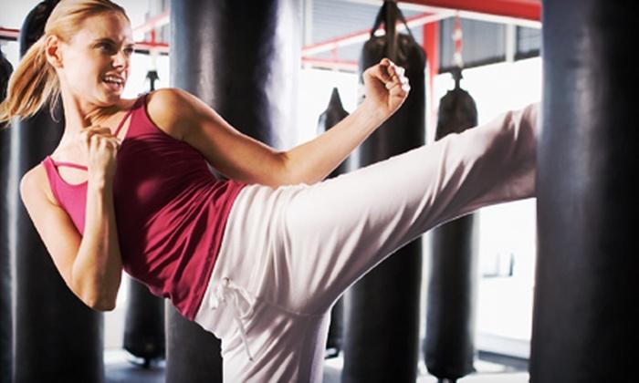 The Institute of Martial Arts - Central San Jose,Sunol-Midtown: 5 or 10 Cardio Kickboxing or Krav Maga Classes at The Institute of Martial Arts (Up to 90% Off)