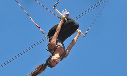 $42 for a Two-Hour Trapeze Lesson at Trapeze School New York ($87 Value)