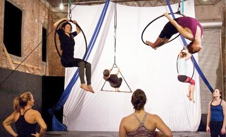 Quixotic Fusion School of Performing Arts - Quixotic Fusion School of Performing Arts in Kansas City