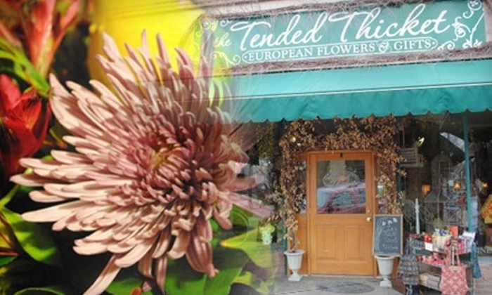Tended Thicket - Washington Park: $25 for $50 Worth of Body Products, Candles, Bags, and More at The Tended Thicket