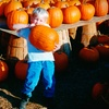Up to 54% Off Fall-Fest Admissions in Gloucester