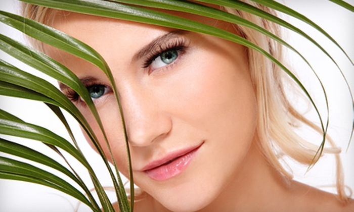 Peppermint Organic Spa - Kars - Osgoode: $30 for an Advanced Organic Facial at Peppermint Organic Spa ($60 Value)