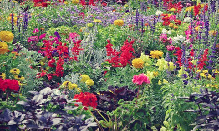 Bluemel's Garden & Landscape Center - Greenfield: $10 for $20 Worth of Plants, Flowers, and Gardening Supplies at Bluemel's Garden & Landscape Center