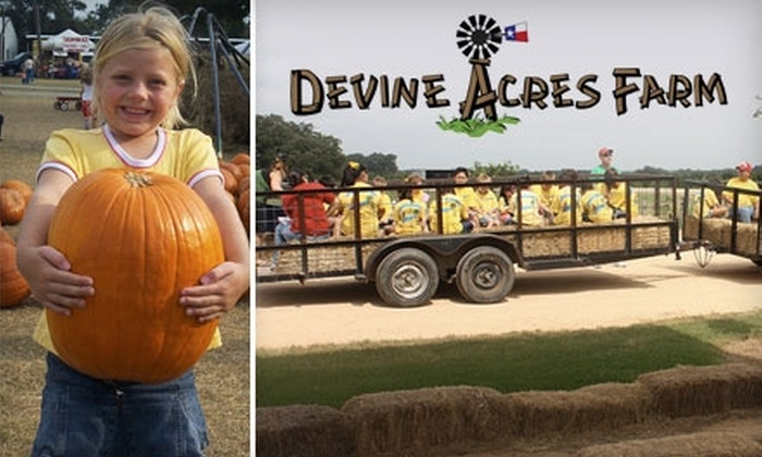 Devine Acres Farm - Devine: $4 Admission to Pumpkin Extravaganza at Devine Acres Farm