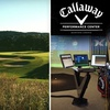 Half Off Club Fitting and Golf Lesson