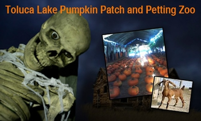 Toluca Lake Pumpkin Patch and Petting Zoo - Valley Village: $10 for Two Tickets to Haunted Maze at Toluca Lake Pumpkin Patch ($24 Value)