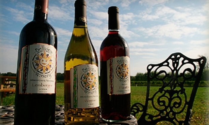 Bellview Winery - Philadelphia: $16 for a Winery Tour and Wine in Souvenir Glasses for Two at Bellview Winery in Landisville