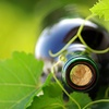 Up to 54% Off Wine-Tasting Seminars in Lee's Summit
