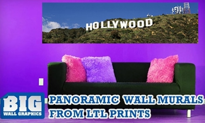 Larger Than Life Prints - Los Angeles: $35 for a Panoramic Wall Mural from Larger Than Life Prints