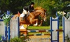Calliope Stable - Cedar Park-Liberty Hill: Introductory Horse-Riding Lesson or One-Week Winter or Summer Children's Riding Camp at Calliope Stable in Leander (Up to 60% Off)