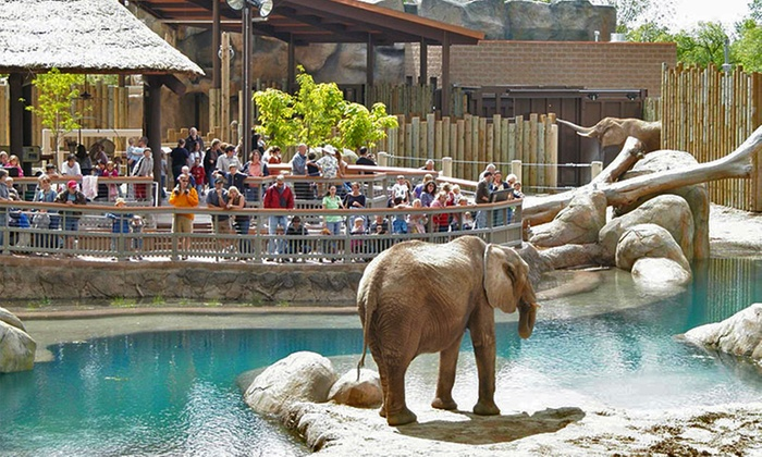 Visit Salt Lake – Connect Pass  - Multiple Locations: 365-Day Connect Pass  for 13 Attractions Including Zoos, Museums, and More from Visit Salt Lake (Up to 24% Off)