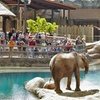 Up to 9% Off Pass to Utah Museums, Zoo, and Other Attractions