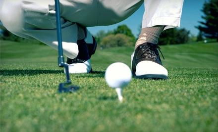3-Hour Beginners Full Swing Clinic (a $225 value) - Reason's Golf Academy in Auburn Hills